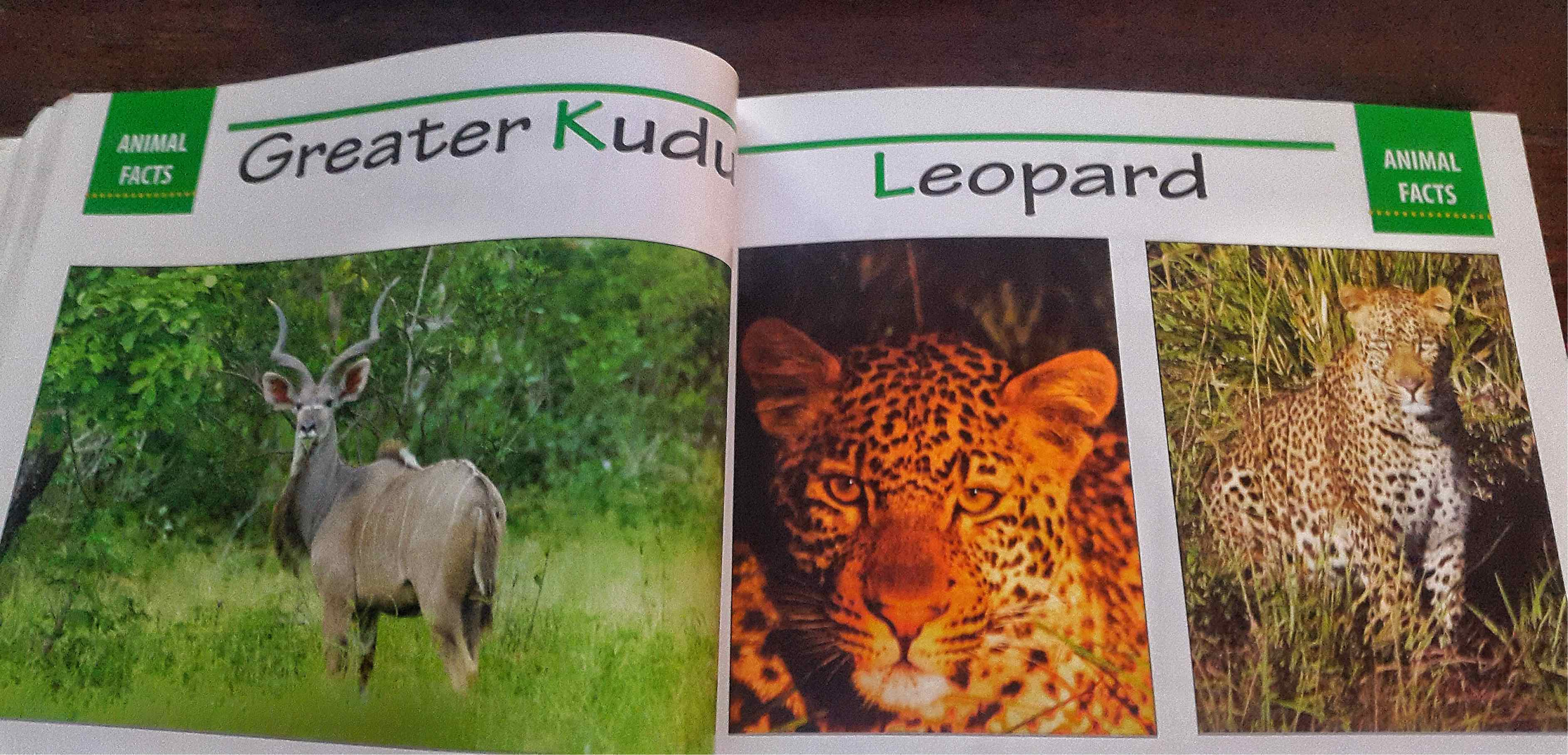 From The Sobo Guide to Malawi's Mammals